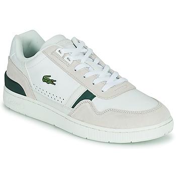 鞋子 男士 球鞋基本款 Lacoste T-CLIP 0120 3 SMA 白色 / 米色