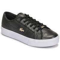 鞋子 女士 球鞋基本款 Lacoste ZIANE PLUS GRAND 07211CFA 黑色