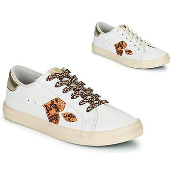 鞋子 女士 球鞋基本款 Le Temps des Cerises AUSTIN 白色 / 金色
