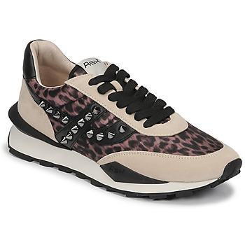 鞋子 女士 球鞋基本款 Ash 艾熙 SPIDER STUDS 米色 / 黑色