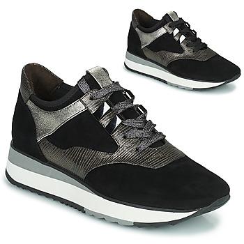 鞋子 女士 球鞋基本款 Adige XERUS V1 SOLAR CARBONE 灰色