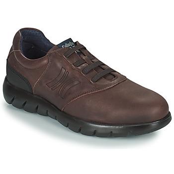鞋子 男士 德比 CallagHan PLUVIAM 棕色