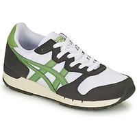 鞋子 球鞋基本款 Onitsuka Tiger 鬼冢虎 ALVARADO 绿色 / 黑色 / 白色