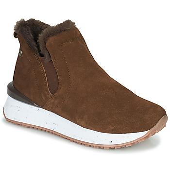 鞋子 女士 高帮鞋 Gioseppo JONDAL 棕色