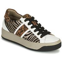 鞋子 女士 球鞋基本款 Primigi (adulte) DONNA AVA 白色 / 棕色