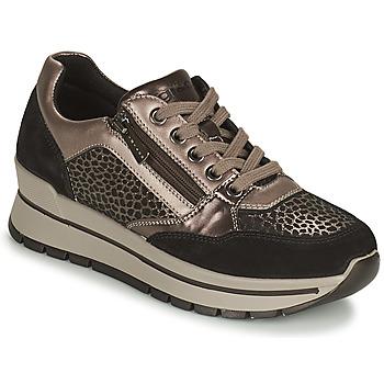 鞋子 女士 球鞋基本款 Primigi (adulte) DONNA ANISIA 银灰色 / 黑色