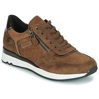鞋子 女士 球鞋基本款 Refresh 77718 棕色