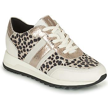 鞋子 女士 球鞋基本款 Geox 健乐士 TABELYA 白色 / 黑色 / 银灰色