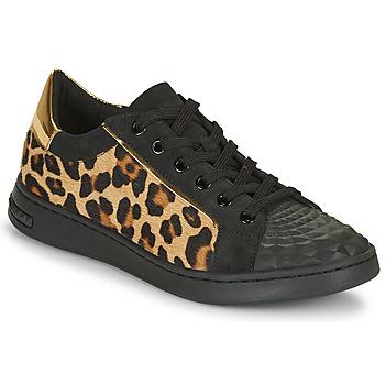 鞋子 女士 球鞋基本款 Geox 健乐士 JAYSEN 黑色 / Leopard