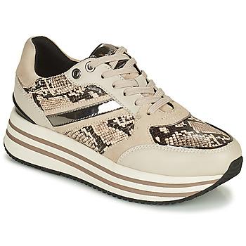 鞋子 女士 球鞋基本款 Geox 健乐士 KENCY 米色