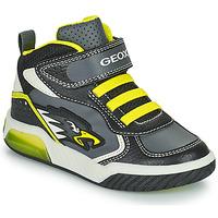 鞋子 男孩 高帮鞋 Geox 健乐士 INEK 灰色 / 绿色