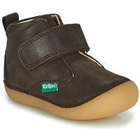 鞋子 男孩 短筒靴 Kickers SABIO 棕色