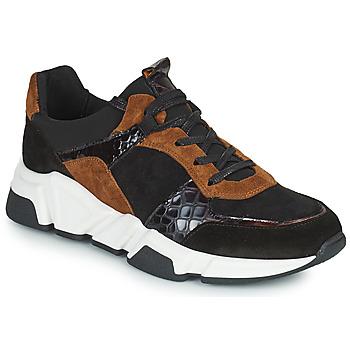 鞋子 女士 球鞋基本款 Regard KENO 黑色 / 棕色