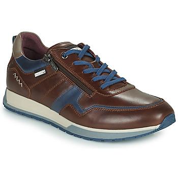 鞋子 男士 球鞋基本款 Pikolinos 派高雁 CAMBIL 棕色 / 蓝色