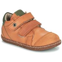 鞋子 男孩 高帮鞋 Aster WASHAN 驼色 / 绿色