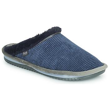 鞋子 女士 拖鞋 Scholl BRIENNE FLUFFY 海蓝色