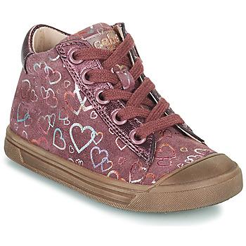 鞋子 女孩 高帮鞋 Acebo's 5533EL-GRANADA 玫瑰色