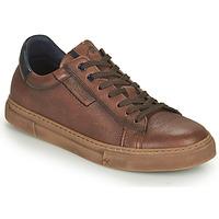 鞋子 男士 球鞋基本款 Fluchos 富乐驰 NIKO 棕色