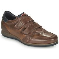 鞋子 男士 球鞋基本款 Fluchos 富乐驰 DANIEL 棕色