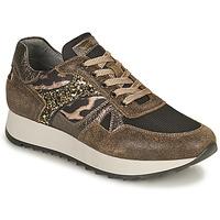 鞋子 女士 球鞋基本款 Nero Giardini AVOCATO 卡其色 / Leopard