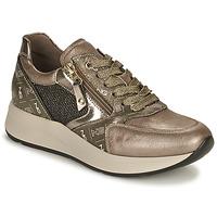 鞋子 女士 球鞋基本款 Nero Giardini GIROMONO 金色