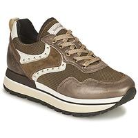 鞋子 女士 球鞋基本款 Nero Giardini LENTILLO 棕色