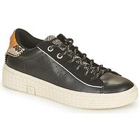 鞋子 女士 球鞋基本款 Palladium Manufacture TEMPO 04 SYN 黑色