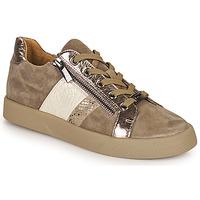 鞋子 女士 球鞋基本款 MAM'ZELLE AUBER 米色