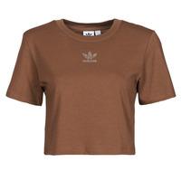 衣服 女士 短袖体恤 Adidas Originals 阿迪达斯三叶草 CROPPED  TEE 棕色