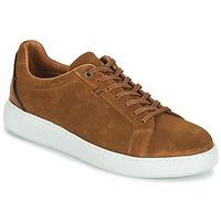 鞋子 男士 球鞋基本款 Pellet OSCAR 棕色
