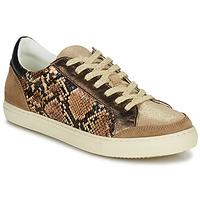 鞋子 女士 球鞋基本款 Betty London PERMINA 棕色