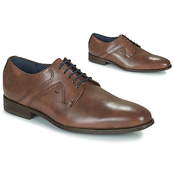 鞋子 男士 德比 Redskins HALOIS 栗子色