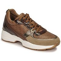 鞋子 女士 球鞋基本款 Fericelli PIRYNA 米色