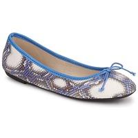 鞋子 女士 平底鞋 Koah GAME 藍色