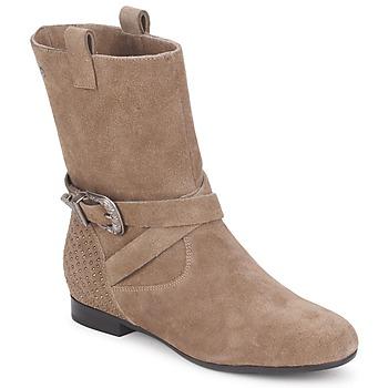 鞋子 女士 短筒靴 Couleur Pourpre TAMA 灰褐色
