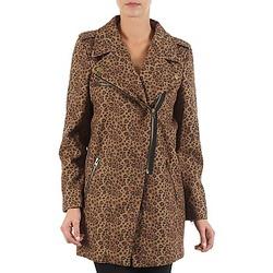 衣服 女士 大衣 Brigitte Bardot BB43110 棕色 / Leopard