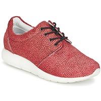 鞋子 女士 球鞋基本款 Maruti WING 红色