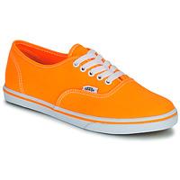 鞋子 女士 球鞋基本款 Vans 范斯 AUTHENTIC LO PRO 橙色 / Pop