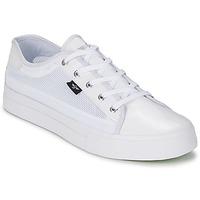 鞋子 男士 球鞋基本款 Creative Recreation KAPLAN 白色