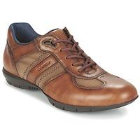 鞋子 男士 德比 LLOYD ARMAND 棕色