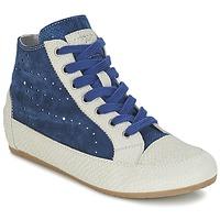鞋子 女士 高帮鞋 Tosca Blu CITRINO 海蓝色