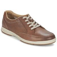 鞋子 男士 球鞋基本款 Clarks 其乐 STAFFORD PARK5 棕色