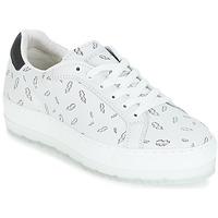 鞋子 女士 球鞋基本款 Diesel 迪赛尔 S-ANDYES  WOMAN 白色