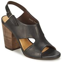 鞋子 女士 凉鞋 Coclico CASPAR 黑色