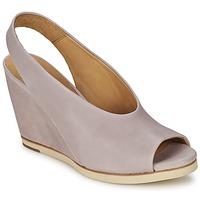 鞋子 女士 凉鞋 Coclico NELS 紫罗兰 / 米色