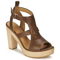 鞋子 女士 涼鞋 Coclico SHAE 棕色