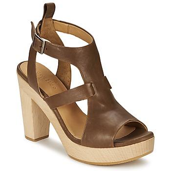 鞋子 女士 凉鞋 Coclico SHAE 棕色