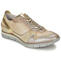 鞋子 女士 球鞋基本款 Manas  金色