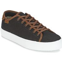 鞋子 男士 球鞋基本款 Victoria 维多利亚 BASKET LINO DETALLE MARRON 黑色 / 棕色