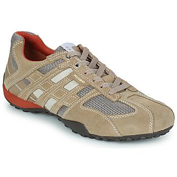 鞋子 男士 球鞋基本款 Geox 健乐士 SNAKE 米色